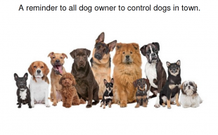 Dogs COntrol