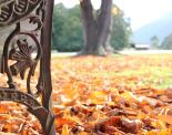 MANDY GROSHINSKI